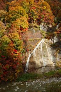 白山スーパー林道・赤石滝