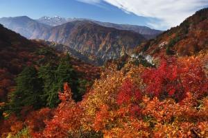 白山スーパー林道からの眺め